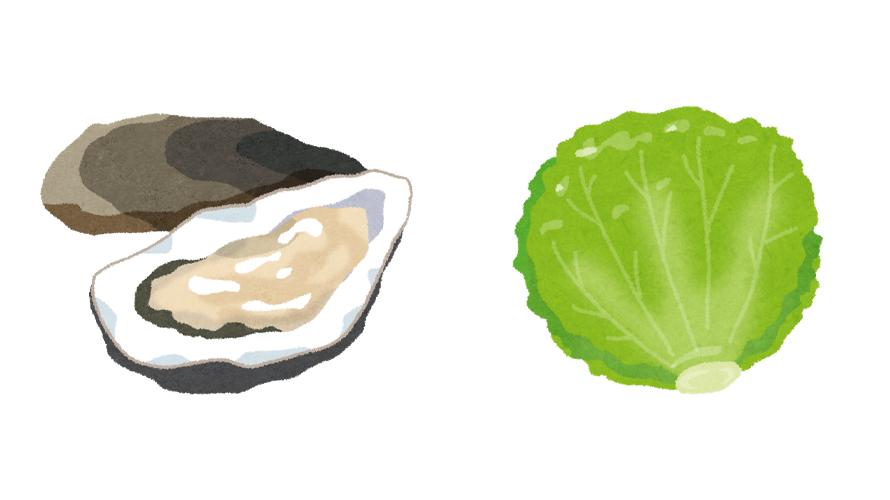 牡蠣とレタス