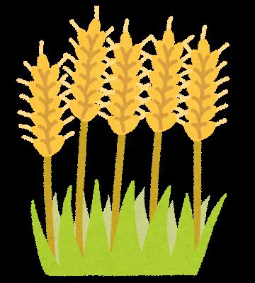 小麦という支配者